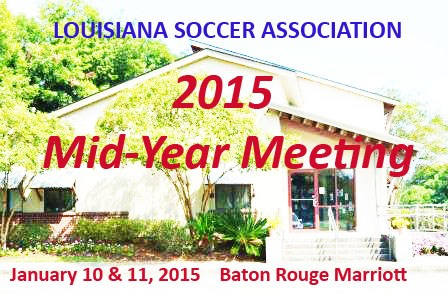 2015 LSA Mid-year Meeting